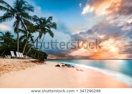 Dominican Republic coastal scenery Stock photo © prill