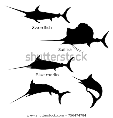 silhouette of sword fish stock photo © perysty