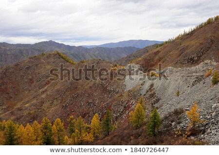 垂直 岩 黄色 山 谷 ストックフォト © tab62