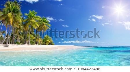 Sand of beach caribbean sea Stock photo © Bertl123