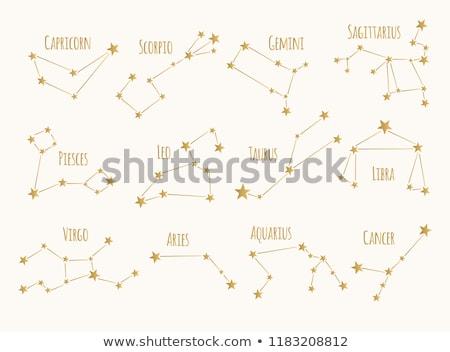 Scorpio Zodiac Star Sign Stock photo © cidepix