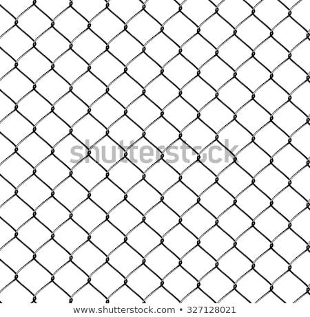 Fence braided Stock photo © w20er