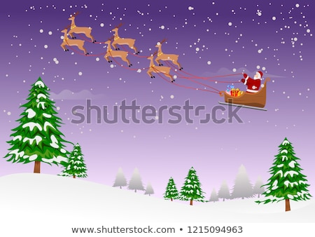 winter snow falling over pine trees stock photo © morrbyte