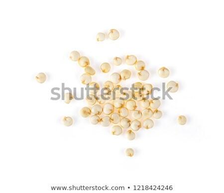 pelado · secado · cuchara · de · madera · aislado · blanco · cerebro - foto stock © marimorena