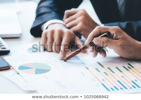 pénzügyi · tervezés · üzlet · stratégiák · vektor · ikonok · háló - stock fotó © burakowski