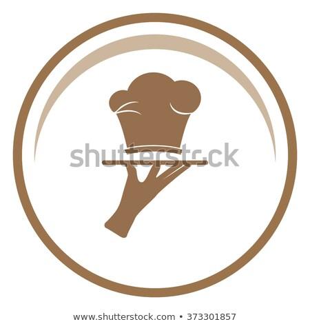 Turkije chef presenteren schotel vector afbeelding Stockfoto © digitaljoni