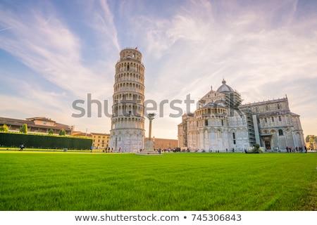 View of Pisa Stock photo © Dserra1