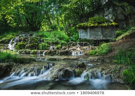 Opuszczony mały domu rzeki Zdjęcia stock © stryjek