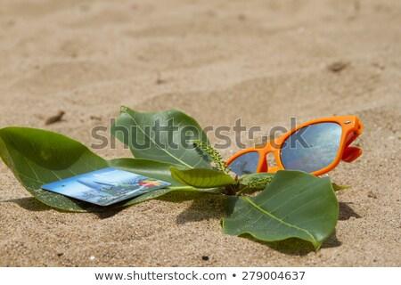 Oranje zonnebril zand strand Indië goa Stockfoto © mcherevan