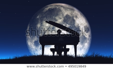 man plays the piano at sunset Stock photo © adrenalina