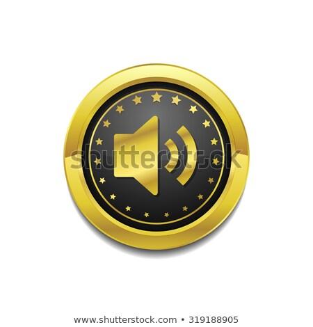 Voulme Circular Gold Vector Web Button Icon Stock photo © rizwanali3d