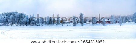panorama of winter wood with river stock photo © paha_l