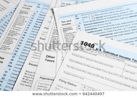 налоговых · форме · заполнение · стандартный · доход · возврат - Сток-фото © nenovbrothers