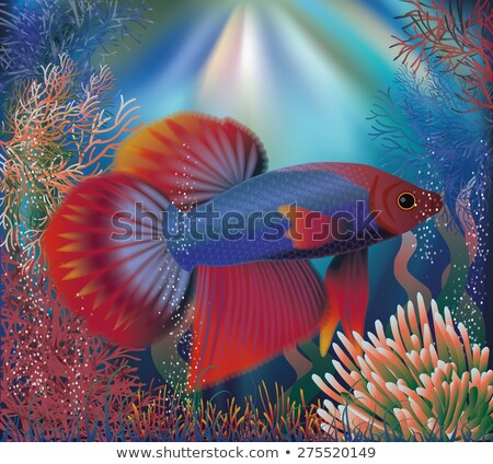 Underwater wallpaper with well fish, vector illustration Stock photo © carodi