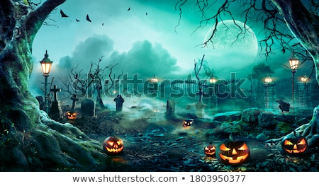 grave in from of moon, scary halloween background Stock photo © SArts
