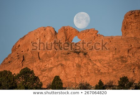 Garden Of The Gods Kissing Camels Stock photo © brm1949