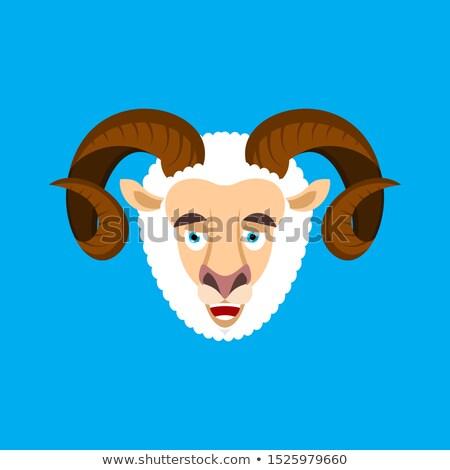 Carnero cara feliz emoción avatar ovejas Foto stock © popaukropa