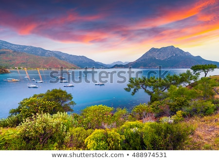 napfelkelte · festői · fa · nap · naplemente · tenger - stock fotó © givaga