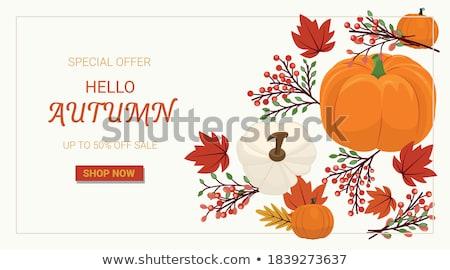 50 stagione vendita banner foglie zucca Foto d'archivio © TasiPas