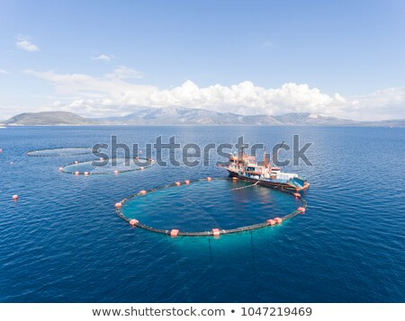 view of fishing boats on a background of blue open sea and a tanker blurred on the horizon stock photo © artjazz