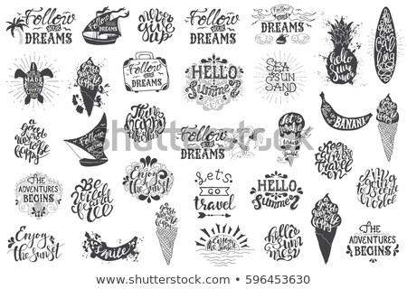 Klasszikus kézzel rajzolt utazás szett kaland logo Stock fotó © JeksonGraphics