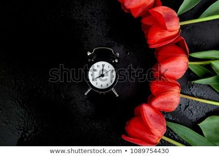 Preto despertador buquê vermelho tulipas mulher Foto stock © Illia