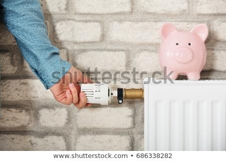Mulher termóstato piggy bank radiador jovem sorrindo Foto stock © AndreyPopov