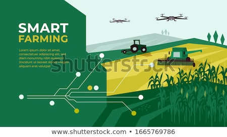 Agricultural farm with fields and livestock Stock photo © jossdiim