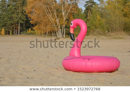 Abandoned pink flamingo swim ring on sand beach Stock photo © xbrchx