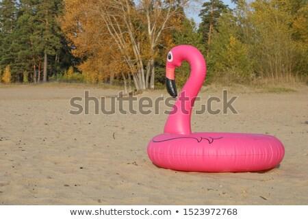розовый · фламинго · пляж · надувной · песок · лет - Сток-фото © xbrchx