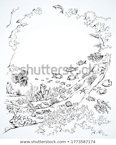 Noir ligne art starfish cartoon blanche Photo stock © cidepix