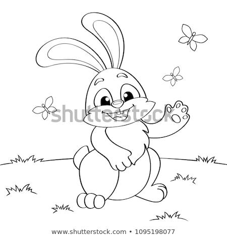 Coniglio coniglio cartoon libro da colorare bianco nero illustrazione Foto d'archivio © izakowski