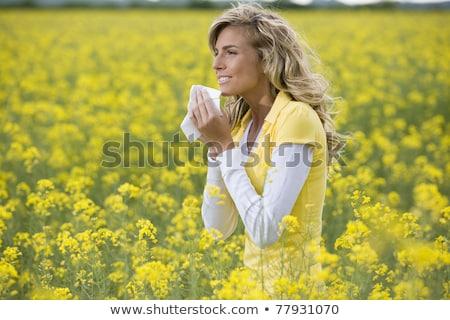 nő · zsebkendő · fiatal · nő · lány · arc · tél - stock fotó © lopolo
