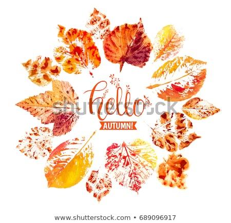 Twórczej ramki jesienią dąb pozostawia żółty Zdjęcia stock © artjazz