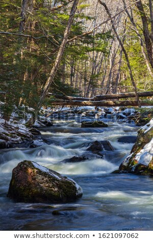 Icy waters of a winter river - long exposure image Stock photo © lightpoet