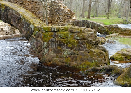 Moss Covered Bridge Stock photo © craig