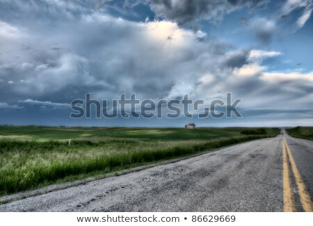 vazio · rural · estrada · pradaria · nublado · céu - foto stock © pictureguy