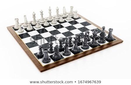 Chess on chessboard Stock photo © dmitry_rukhlenko