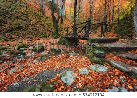 Balkan Mountains in the fall Stock photo © joyr
