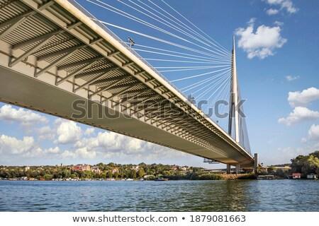 Pylon bridge over Ada, Belgrade  Stock photo © bokica