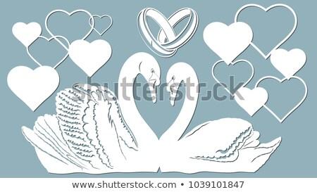 Wedding rings and two swans Stock photo © Marisha