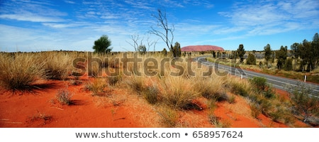オーストラリア人 道路 風景 長い 孤独 オーストラリア ストックフォト © roboriginal