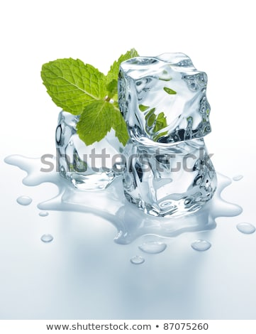 Three ice cubes and mint Stock photo © Givaga