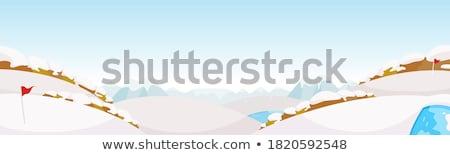 campo · de · golfe · verde · inverno · neve · azul · bandeira - foto stock © morrbyte
