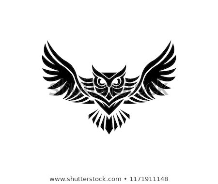 background design with owls stock photo © kariiika