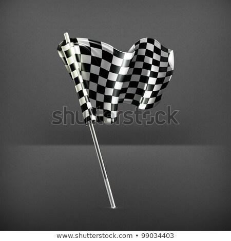 zászló · képlet · illusztráció · hasznos · designer · munka - stock fotó © boroda