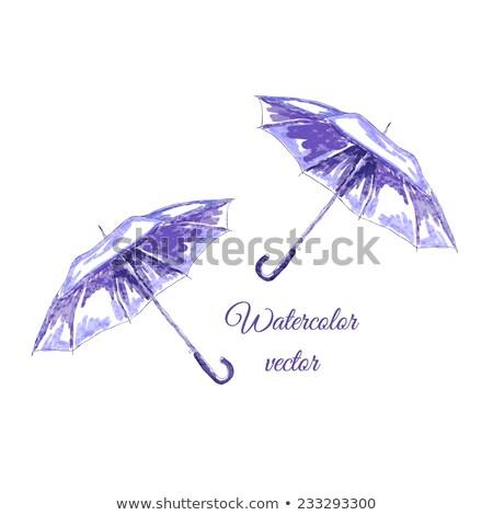 kinyitott · kék · esernyő · izolált · fehér · tavasz - stock fotó © tetkoren