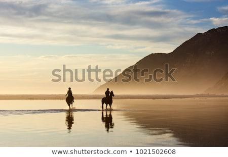 пляж мнение дисков полуостров Кейптаун Сток-фото © dirkr