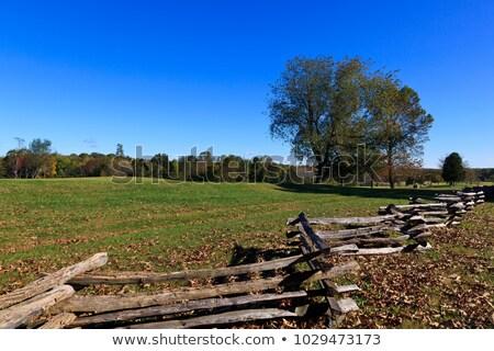 Split Rail Fence Stock photo © pancaketom