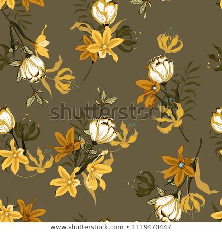 Geel · bruin · bloem · geïsoleerd · bloeien · bloemen - stockfoto © stocker
